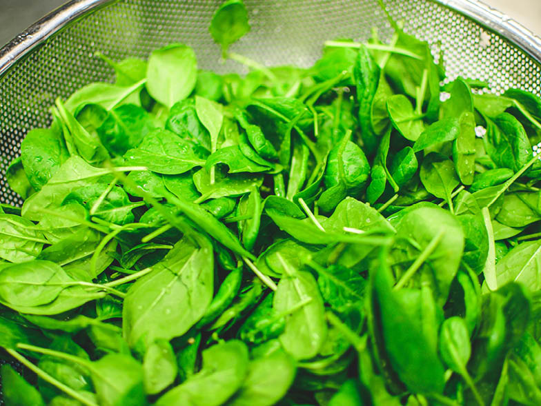 close up of spinach