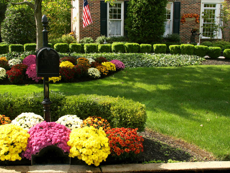 Front yard with flowers planted near curb