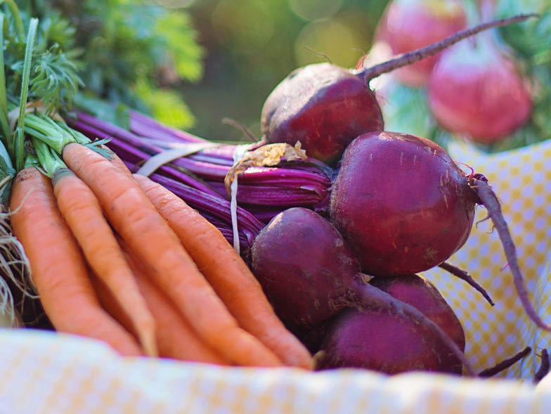 Red beets and carrots in basket